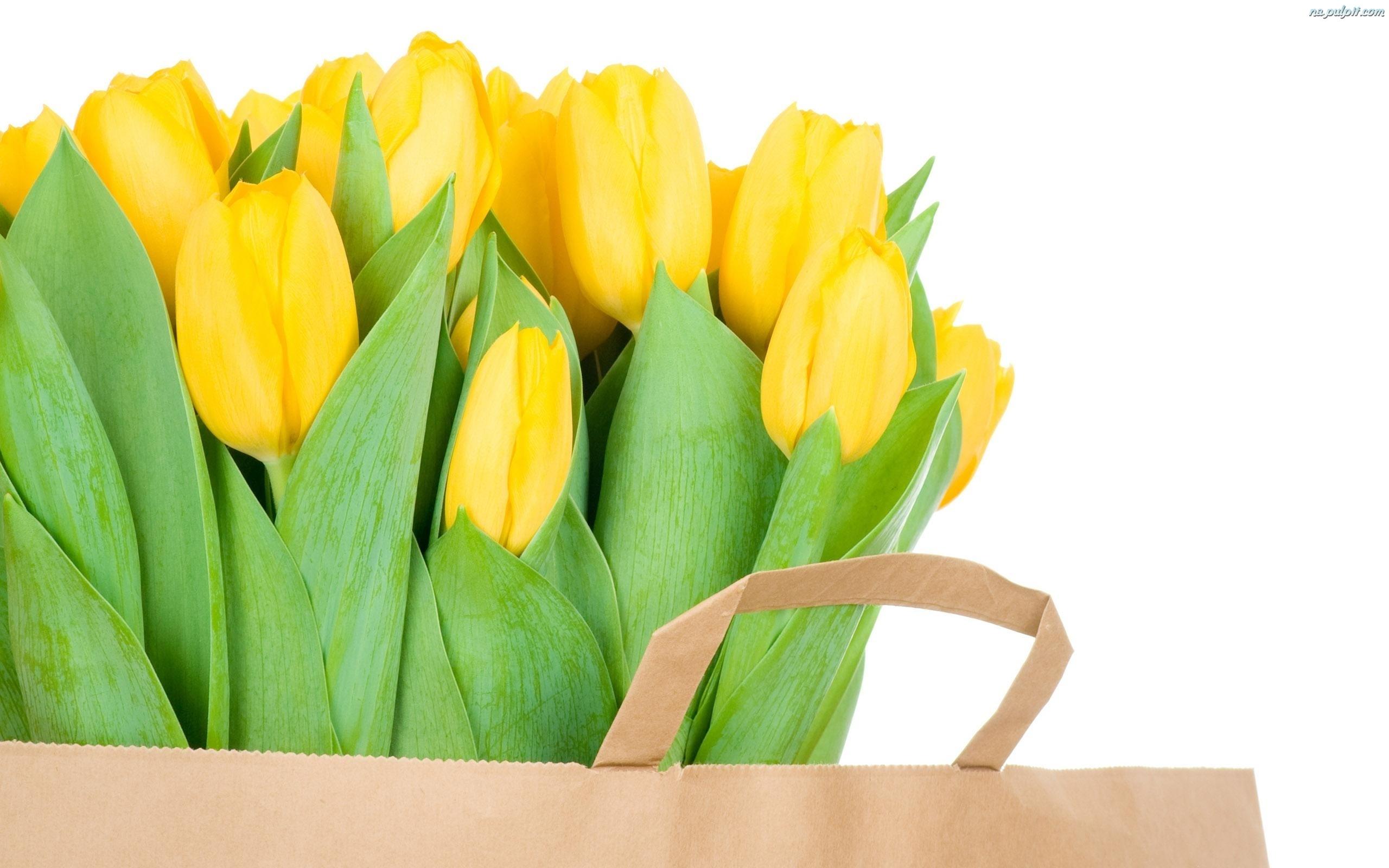... tulipany-papierowa.na-pulpit.com/zdjecia/torba-olte-tulipany-papierowa